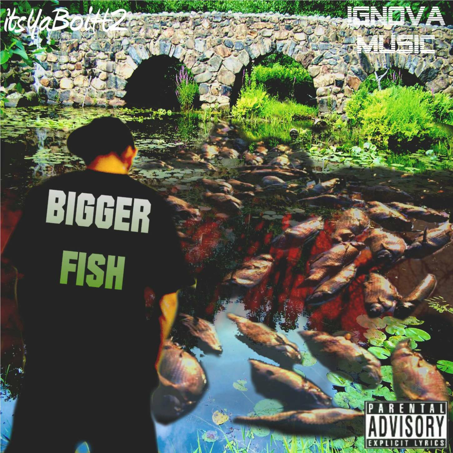 Bigger Fish Front Cover