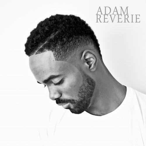 Adam Reverie -